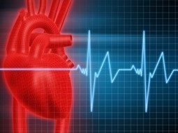 Facts about Angina (Chest Pain) | Gunnison Colorado Seniors | Scoop.it