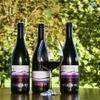 Slovenian winemakers seek apostles to spread the word on best labels | Vitabella Wine Daily Gossip | Scoop.it