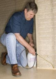 Ladybug's Pest Control - Insect Exterminator #1 in Paris, TN | Ladybug's Pest Control | Scoop.it