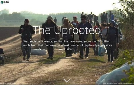 The Uprooted | Education, Curiosity, and Happiness | Scoop.it