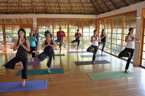 Yoga Teacher Training Centers- Rishikesh | Yoga Teacher Training Rishikesh | Scoop.it