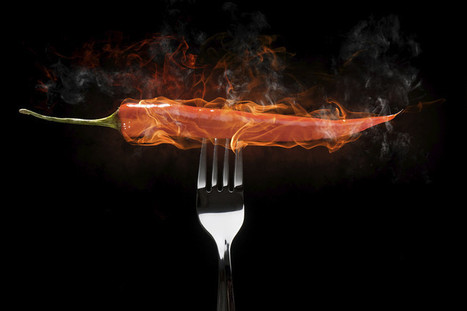 Why We Love the Pain of Spicy Food - Wall Street Journal | Sensory Marketing of foods | Scoop.it