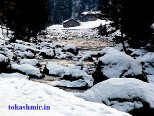 Jammu Kashmir honeymoon tour packages with prices from Delhi | Indian Tourism Places | Scoop.it