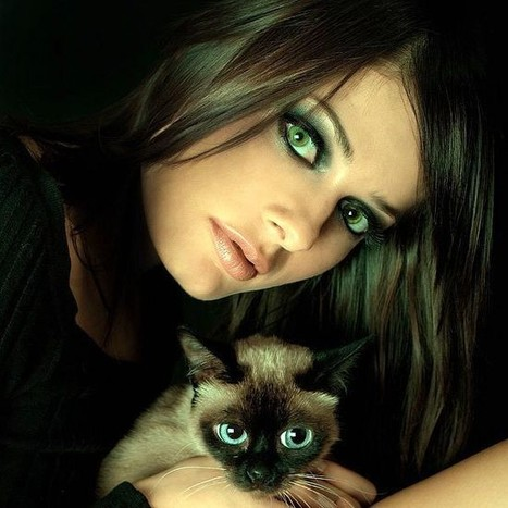 Cat Supplies – Select the Right Things for Improving Lifestyle of Loved On | hgche fiote | Scoop.it