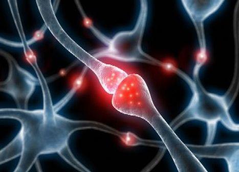 ¿Los primeros marcadores del alzhéimer? | Hablamos de Alzheimer | Scoop.it