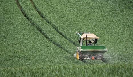 Google s'intéresse à l'agriculture high tech BFM TV | Agrifoodiv | Scoop.it
