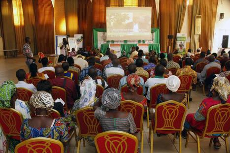 Innovation paysanne, enjeu de développement durable au Sahel | Questions de développement ... | Scoop.it