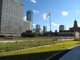 Toronto First North American City with Green Roof Bylaw | Vertical Farm - Food Factory | Scoop.it