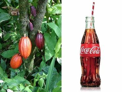 #EstrategiasCompetitivas: Por qué Coca Cola es Coca Cola, 7 estrategias brillantes | Estrategias de Competitividad 2.0: | Scoop.it