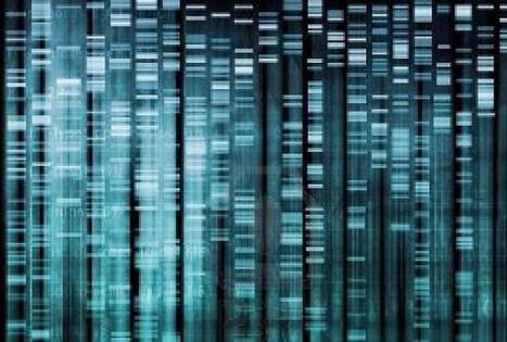 Le langage génétique, langage au niveau quantique | Energie libre et fusion froide | Scoop.it