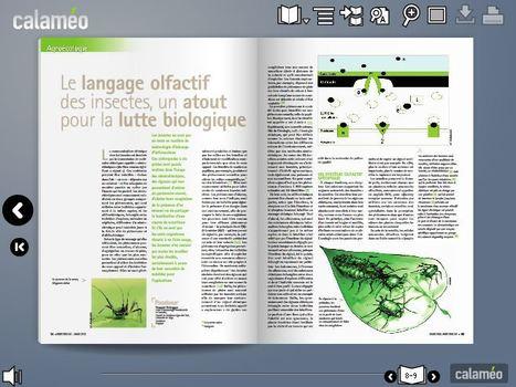 Le langage olfactif des insectes, un atout pour la lutte biologique | EntomoNews | Scoop.it