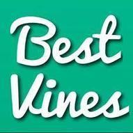 Sélection : le meilleur de Vine en 15 vidéos | Community management best practices | Scoop.it