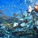 Les déchets marins, une menace grave pour l'environnement | La préservation de l'environnement marin | Scoop.it