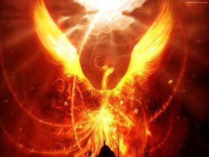 Phénix, l'oiseau de feu qui renait de ses cendres | Les Héros Oubliés - Ressources documentaires | Scoop.it