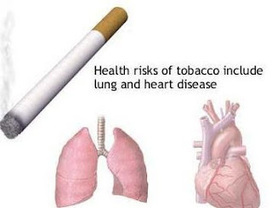 Let's Talk About Lung Cancer: Lung Cancer - Are You At Risk? | About Lung Cancer | Scoop.it