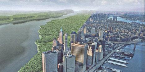 VIDÉO. New York: des scientifiques créent une carte du site de la ville il y a 400 ans | Immobilier | Scoop.it
