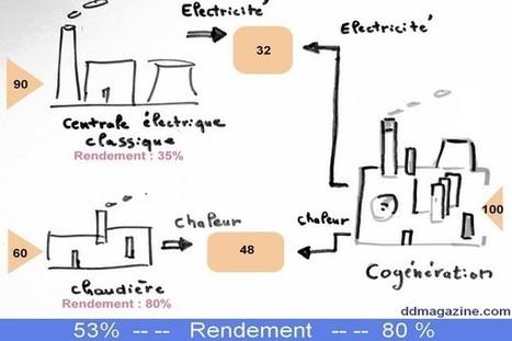 Cogénération : énorme gisement d'économies d'énergie (DDmagazine, 20/09/14) | Les écogénérateurs ou chaudières à micro cogénération gaz, l'avenir du chauffage ? | Scoop.it