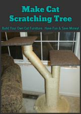 Make Cat Scratching Tree: Build Your Own Cat Furniture.  Have Fun & Save Money! | Pets And Animals | Scoop.it