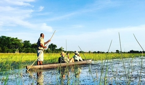 From delta to desert, with a river in between: a tale of three safaris in Botswana - Lonely Planet | Online stuff for the class | Scoop.it