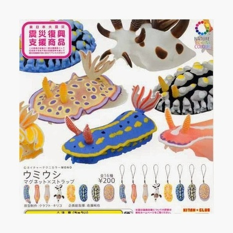 The Echinoblog: Echinoderm & The Invertebrate Zoology Toys of Japan! Echinoblog Travelog Pt. 3 | Amocean OceanScoops | Scoop.it