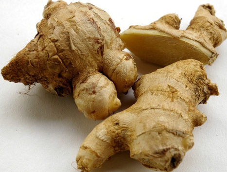 Helping to Breathe: Bronchodilatory effect of ginger | Herbs & Spices | Scoop.it