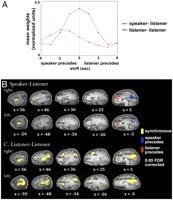 Speaker–listener neural coupling underlies successful communication | Behavior Research Technology | Scoop.it