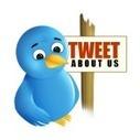 15 TOP Twitter SEO Tips and Tools | WordPress Google SEO and Social Media | Scoop.it