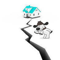 Can Dogs Predict Earthquakes? | Psychology Today | Animal Health | Scoop.it