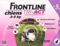frontline tri-act XS 3 pipettes (MERIAL) | CaniCatNews-actualité | Scoop.it