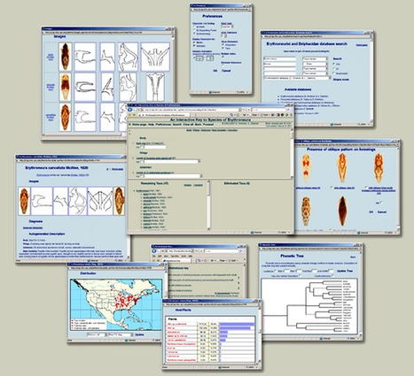 3I Interactive Keys and Taxonomic Databases   High-Fidelity Open Learning Resources   Scoop.it