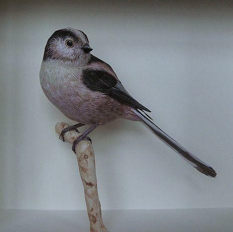 Artist Creates Incredibly Realistic Papercraft Birds | Birds | Scoop.it