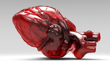 [GR INSA PdL] Grande conférence sur le coeur artificiel Carmat à Nantes le jeudi 2 avril | INSA | Scoop.it