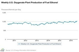 The Latest News and Data About Ethanol Production | Grain du Coteau : News ( corn maize ethanol DDG soybean soymeal wheat livestock beef pigs canadian dollar) | Scoop.it