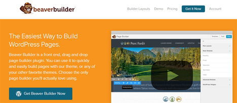 Beaver Builder v1.4.8 | Download Full Nulled Scripts | WooCommerce Extensions Nulled Download | Scoop.it