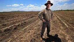 Chine: les grandes entreprises remplacent les paysans | Questions de développement ... | Scoop.it