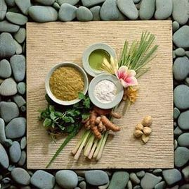 Know Natural Healing Techniques From Ayurveda Specialist | Magic Of Nature | Scoop.it