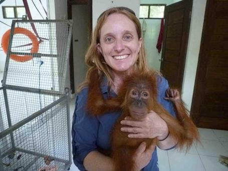 The orangutan 'refugees' of North Sumatra | The Wild Planet | Scoop.it