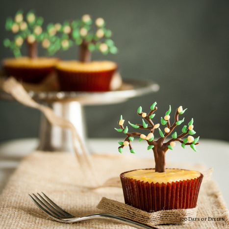 #RECIPE - Lemon Tree Cupcakes | The Man With The Golden Tongs Hands Are In The Oven | Scoop.it