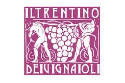 Il Trentino dei Vignaioli racconta l'autenticità e l'artigianalità della vigna | | Fondazione Mach | Scoop.it
