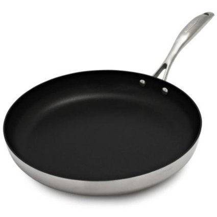 """Best reviews of Scanpan CTQ Nonstick Skillet 69002000 , 10¼"""", 10.25"""" 