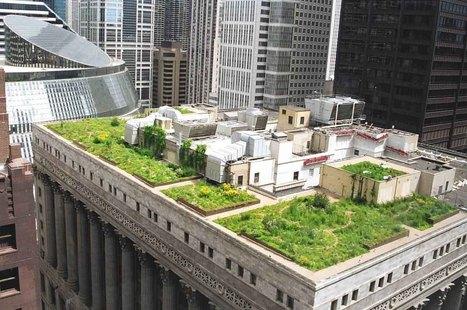 Crazy Buildings on Top of Buildings | Strange days indeed... | Scoop.it