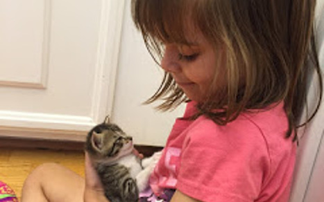 Meet the Kind 7-Year-Old Who Has Helped Save the Lives of 17 Kittens Thanks to Her Foster Skills | Compassion in Action | Scoop.it