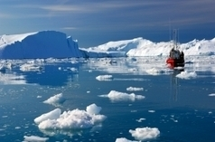 Wildlife and Habitat Conservation News: Arctic at risk from invasive species | Ecosystem issues on a global scale | Scoop.it