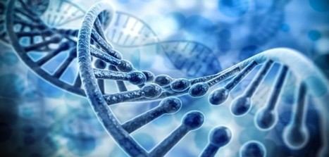 Gene magnifies the psychological impact of life events -- for better and for worse | The future of medicine and health | Scoop.it
