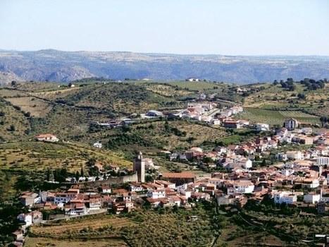 Rota dos azeites: Douro Superior e Trás-os-Montes - Soul Portugal | A4 | Scoop.it