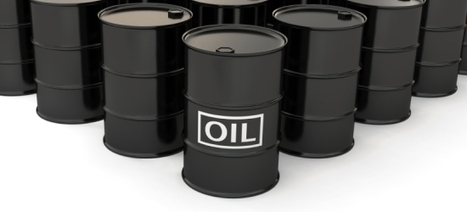 Refining the new oil: Putting a value on social ... - Useful Social Media   Social zoo   Scoop.it