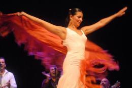 L'école sévillane de danse flamenca reconnue Bien d'intérêt culturel ... | La danse flamenco et sévillanes | Scoop.it