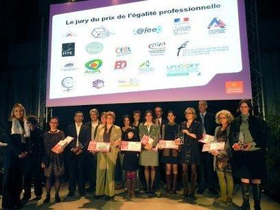 Neuf entreprises lauréates des Prix de l'égalité professionnelle femmes-hommes   La lettre de Toulouse   Scoop.it