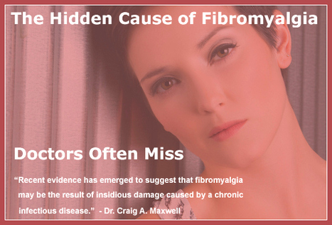 Is Fibromyalgia a Chronic Infectious Disease? - Ask Dr. Maxwell ... | Healing Chronic Pain & Disease | Scoop.it