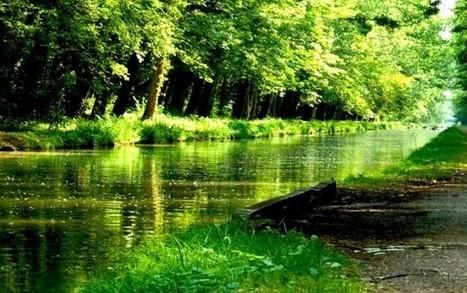 223 composés organiques sont comme une barque qui navigue dans 91 bassins fluviaux d'Europe sous un vent favorable... | Toxique, soyons vigilant ! | Scoop.it